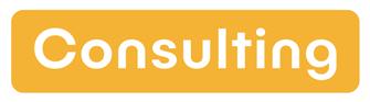 Essesnive Consulting Berlin